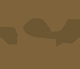 Liquido Fashion Retina Logo