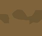 Liquido Fashion Logo
